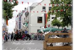 2017-DormagenSchützenfest (20)